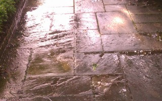 pressure_washed_walkway1
