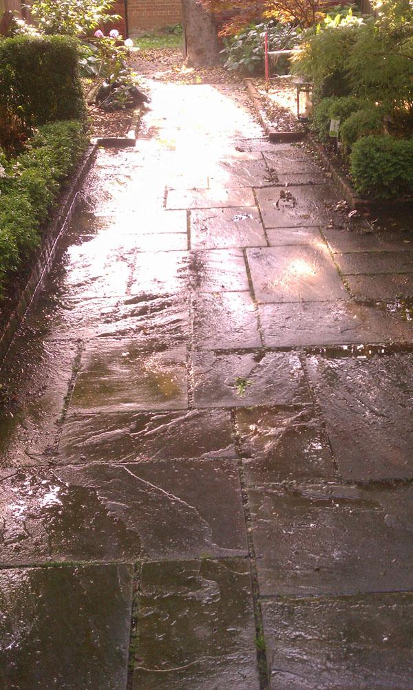 Pressure Washed Walkway
